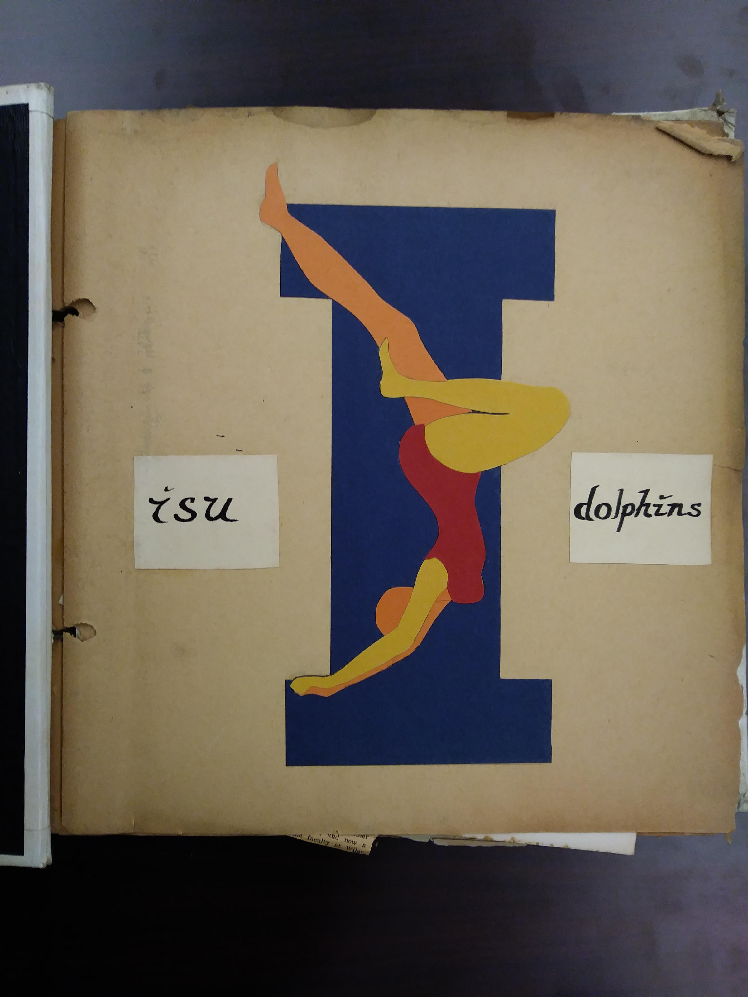 Dolphins Cover Scrapbook