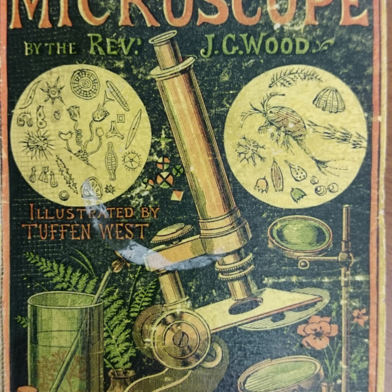 <em>Common Objects of the Microscope</em>