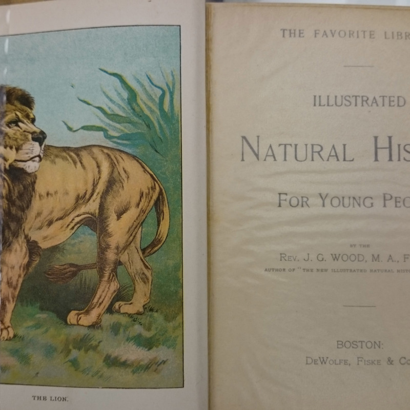 <em>Illustrated Natural History for Young People</em>