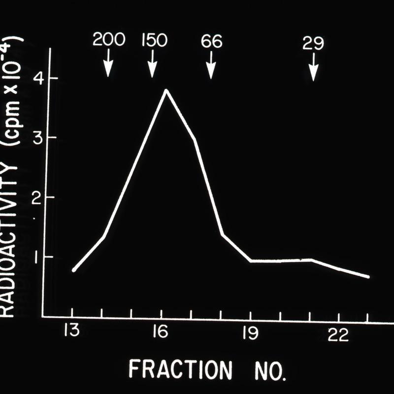 Graph and Illustration of Radioactivity