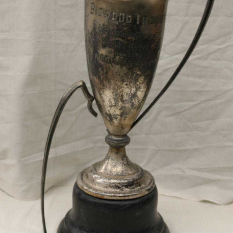Smooshed trophy-Bigwood