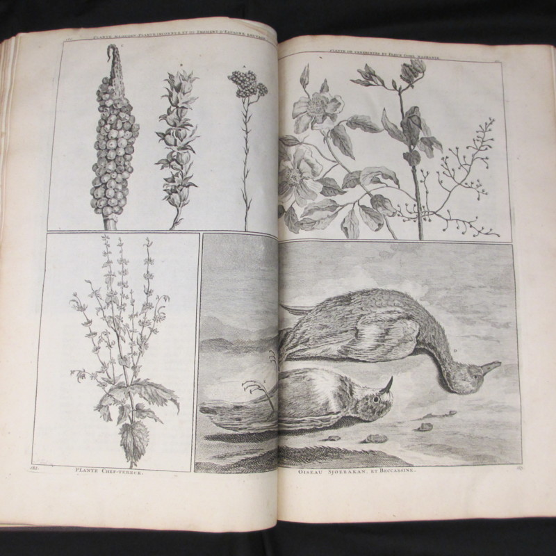 Bruyn, Cornelis de.<em>Travels into Muscovy, Persia, and part of the East-Indies.</em>London: A. Bettesworth [et al.], 1737: Rare Books Uncatalogued Collection, Rare Books and Manuscripts, Indiana State University.