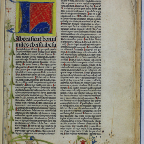 Color, illuminated page