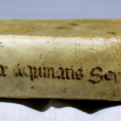 Spine, Parchment