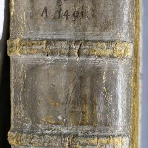 Spine, Aged Leather