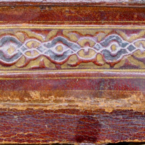 Spine, Tooled & Dyed Leather